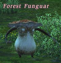 forest_funguar